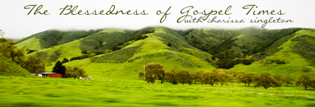 [Artwork for: The Blessedness of Gospel Times]